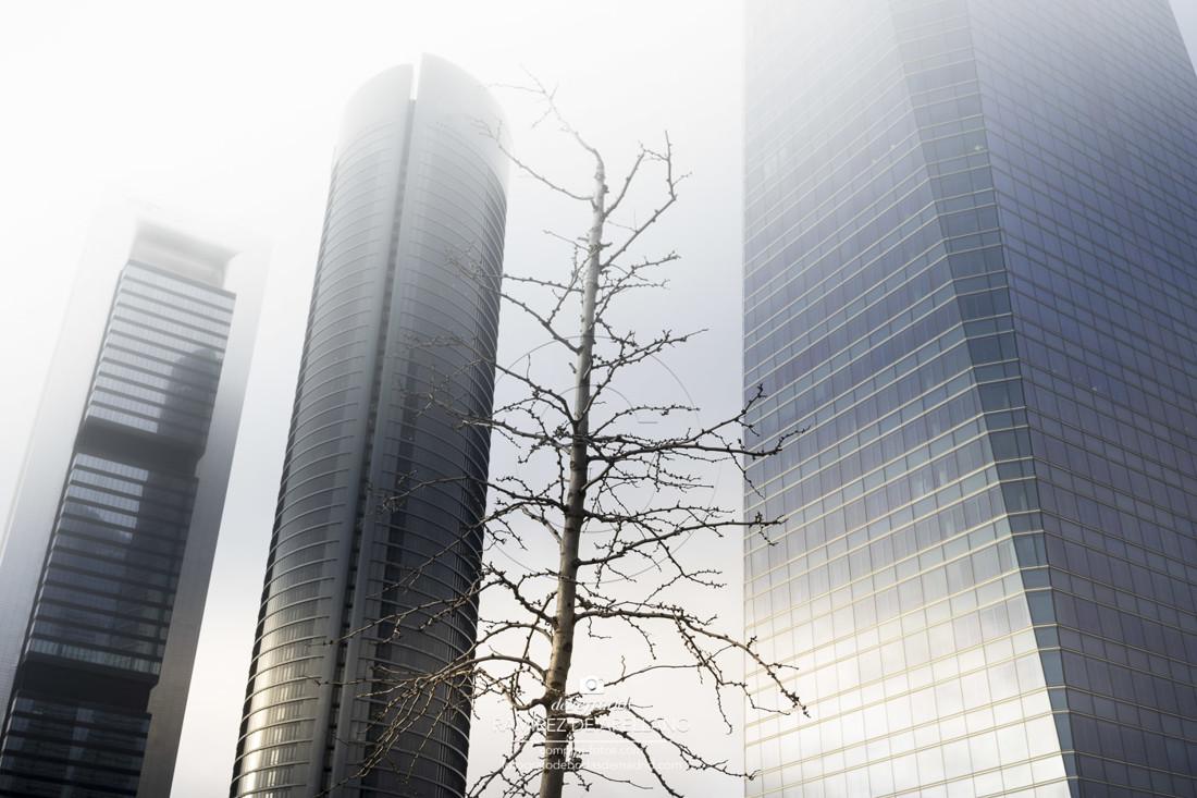 _A7_5770-Torres niebla 7 MB 6000×4000